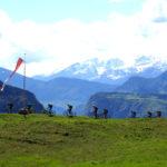 Bergpanorama - Trailcamp Tramin/Südtirol