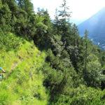 Panoramatrail - Fahrtechnik Garmisch Mountainbike Training