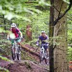 Singletrails im Wald - Fahrtechnik Camp Women