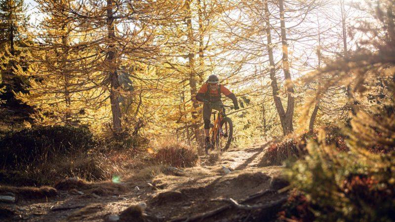 Enduro Trip Valle Maira Superior MTB Camp, Wurzelpassage MTB Technik - Die Rasenmäher Mountainbike Camp